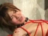 イケメンのヤンキーと調教セックスがしたくて媚薬を使った結果