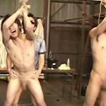 陰毛を剃られてパイチンになった青年を性奴隷に調教!仮性包茎を揺らして絶叫するノンケ